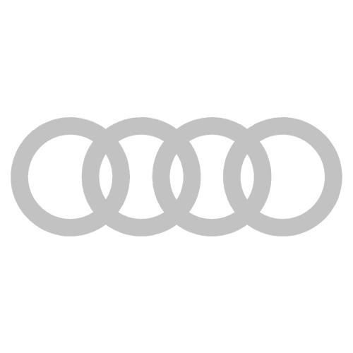 Audi Rings Silver